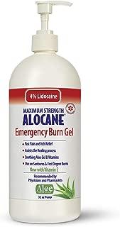 Best alocane for sunburn Reviews