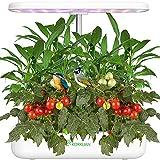 Hydroponics Growing System, 12 Pods Indoor Herb Garden Starter Kit...