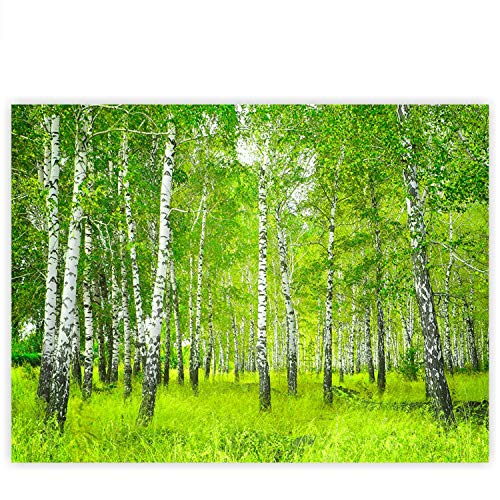 Leinwandbild 100x75 cm - Top - Wandbild XXL Kunstdruck Leinwand Bild Wanddeko Canvas - SUNNY BIRCH FOREST - Birkenwald Bäume Wald Sonne Birke Birken Natur Baum - no. 112, Qualität Leinwand:Premium