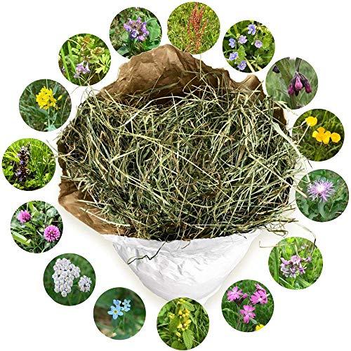 Jumbogras® NATURHEU, 2. Schnitt: Qualitäts-Kleintier-Futter, Heu für Nagetiere wie Kaninchen & Hasen - lose im Papiersack aus der größten Heumilch-Region Europas in Österreich (6 kg)