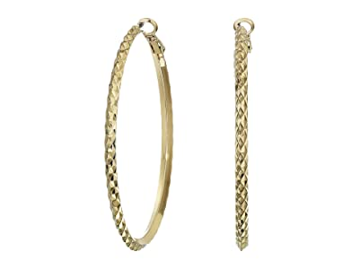 8 Other Reasons Luna Hoops (Gold) Earring