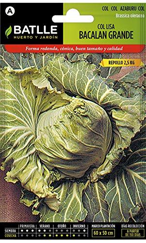 Batlle Gemüsesamen - Grosser Weisskohl Bacalan (3000 Samen)
