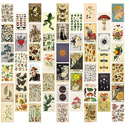 8TEHEVIN 50PCS Vintage Botanical Illustration Tarot Aesthetic Pictures Wall Collage Kit, Trendy Small Poster for Dorm, Vintage Style Art Print Photo Collection, Bedroom Decor for Teens Boys Girls