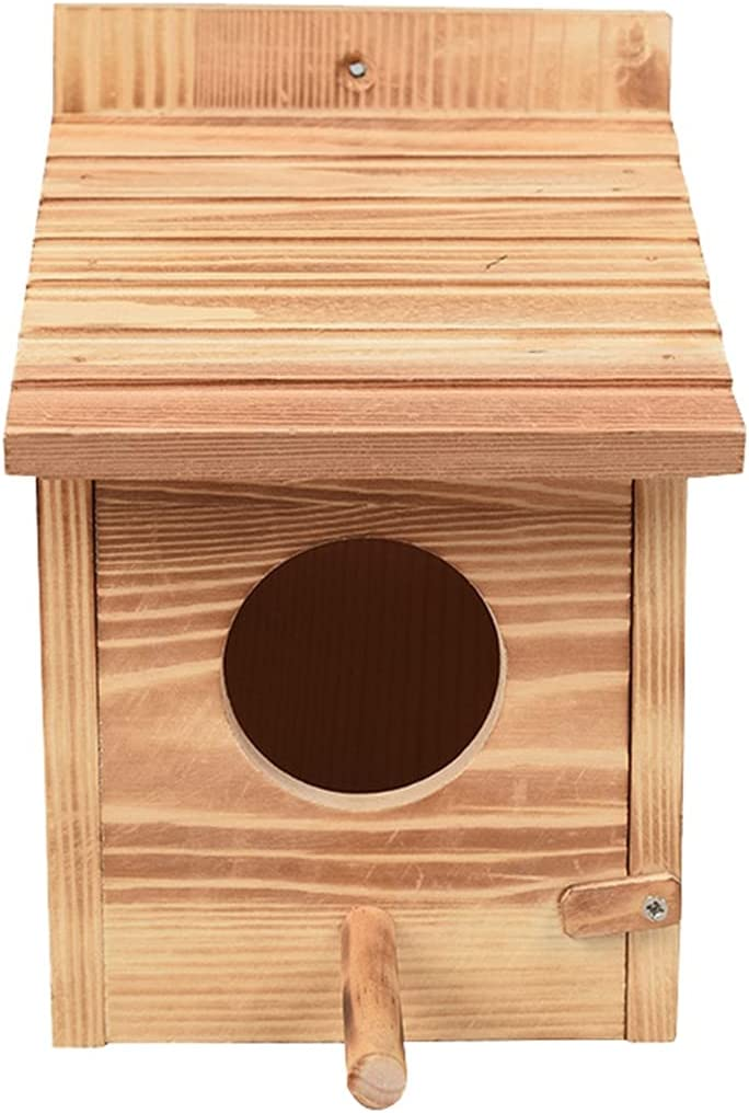 Ranking TOP18 PetPhindU Bird Nest Natural Solid Wood Bir Tucson Mall Decorative