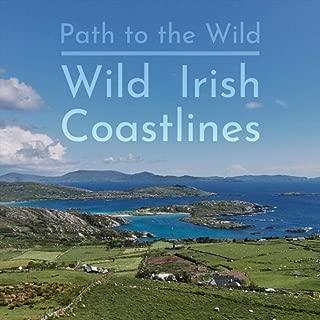 Quiet Waves, Distant Surf, And Coastal Birds in West Cork