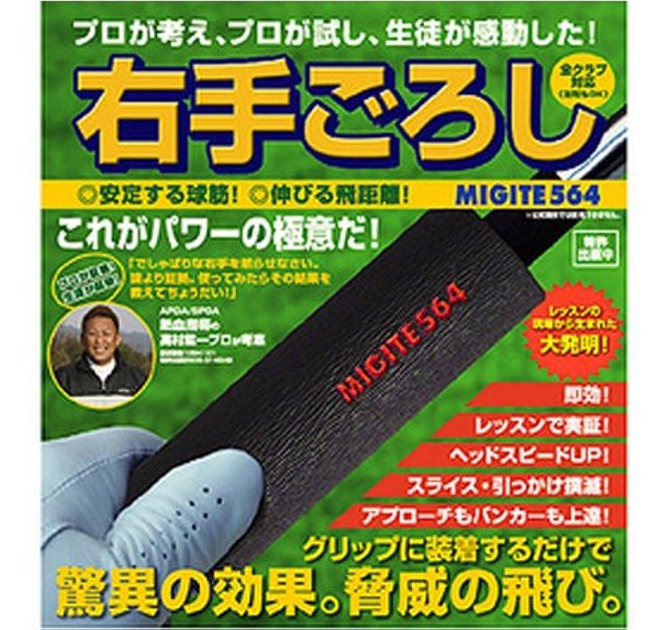 大使館ナラーバーピケダイヤ(DAIYA) ゴルフ練習器 右手ごろし TR-183