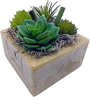 Habersham Candle Co.Prickly Pear and Aloe Succulent GEO Cube Candle
