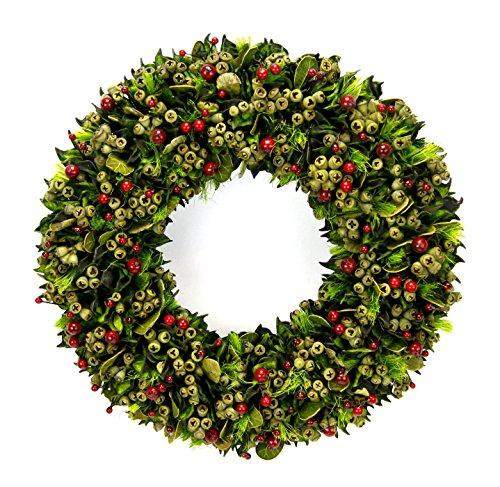 Flair Flower Beeren und Blätter Trockenblumen Wanddeko Türdeko Türkranz Tischkranz Herbstdeko Weihnachtsdeko Kränze Naturmaterialien Trockenfloristik, grün/rot, 31x31x6 cm