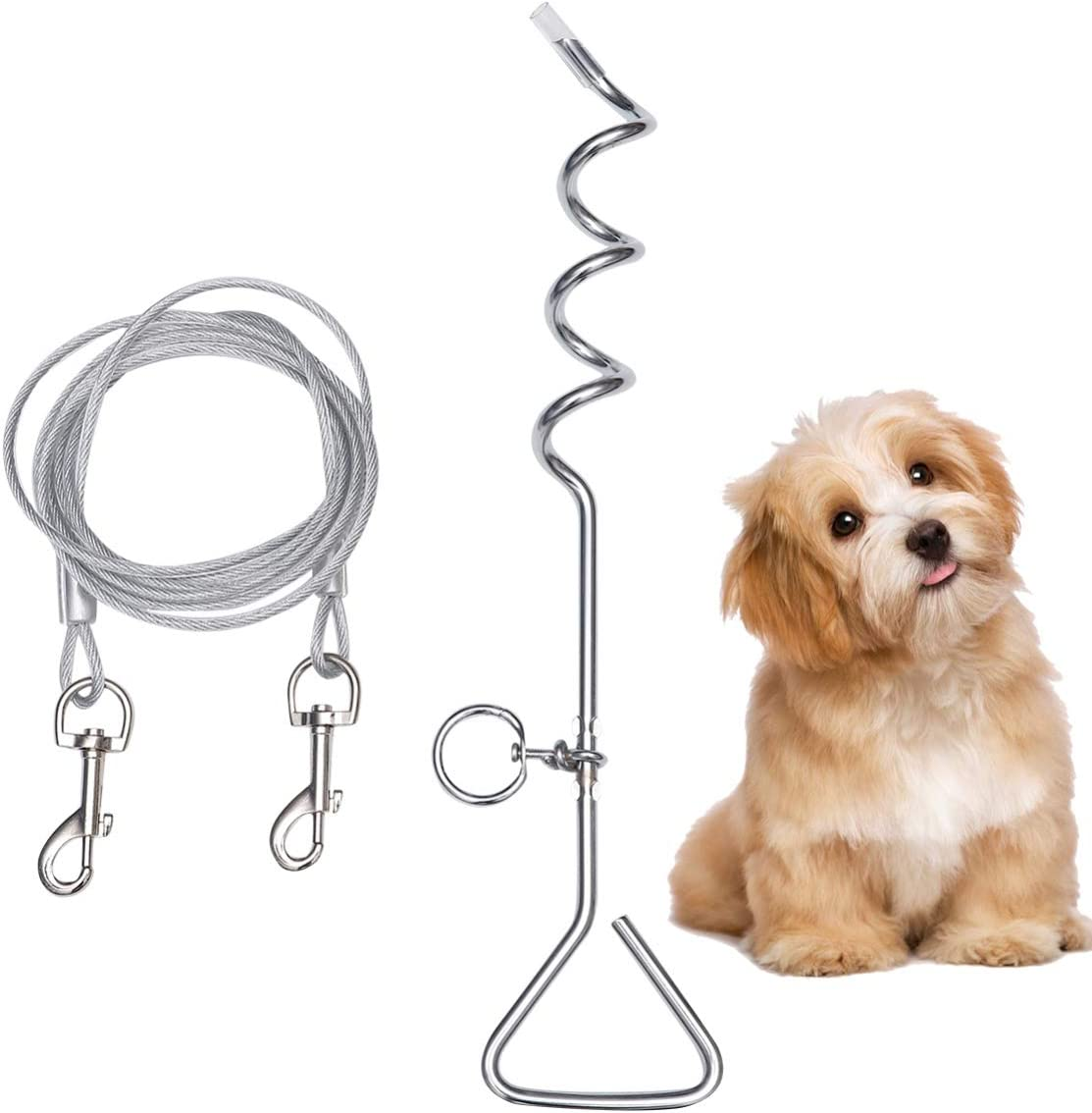 cadena de amarre para perros en camping