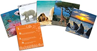 Learning Resources Wild About Animals Snapshots - Critical Thinking Photo Cards