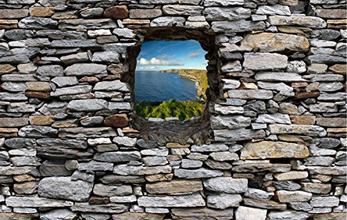 Dalinda Vliestapete Fototapete in 3D-Optik Irland Designtapete graue Steinmauer Tapete VT258