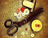TYLPP Pintura al óleo DIY por números, tijeras y sastres, pintado a mano, números pintados a mano, para decoración de la casa, juguetes, 40,6 x 50,8 cm, sin marco