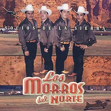 Socios De La Sierra