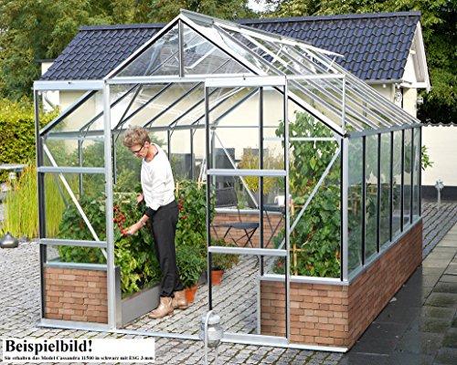 Gartenwelt Riegelsberger Gewächshaus Cassandra - Ausführung: 11500 ESG 3 mm schwarz, Fläche: ca. 11,5 m², mit 4 Dachfenster, Sockel: 2,56 x 4,50 x 0,50 m