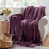 Reafort Ultra Soft Flannel Fleece All Season Light Weight Living Room/Bedroom Warm Blanket(Purple, Throw 50'X60')
