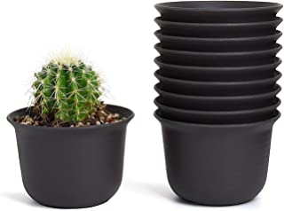 Greenaholics Small Plant Pots - 5.9 Inch Plastic Pots for Succulent and Plant Seedling, with Saucers, Set of 10, Dark Brown