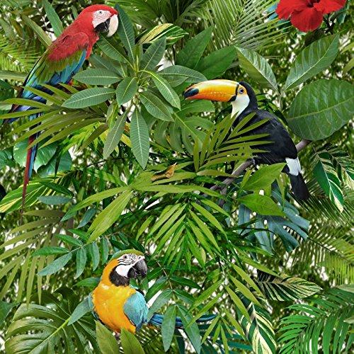 Tropical Jungle papier peint perroquets Oiseaux Feuilles Vert Multicolore Muriva Papier peint