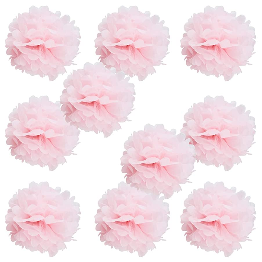 WYZworks Set of 10 - Baby Pink 10