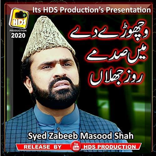 Syed Zabeeb Masood Shah