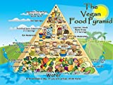 The Museum Outlet charts of - Vegan Food Pyramid - A3
