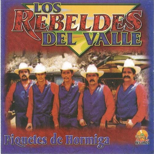 Los Rebeldes Del Valle