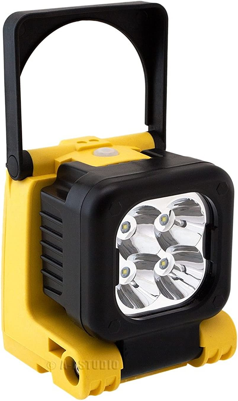 High Kick Digital Heavy Duty Compact Portable 4-LED Work/Spot Light Lamp 12W, Waterproof, Shock/Dust Proof HK-WL1012W