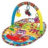 Playgro Baby Krabbeldecke Erlebnisspieldecke Kuschelunterlage Spielmatte Spieldecke mit Modellauswahl (Play in the Park)