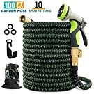"""wyewye Garden Hose 100ft Expandable Flexible Hose for Yard with Triple Layer Latex Core, 3/4"""" Solid Brass Fittings, 3750D Extra Strength Fabric 10 Function Spray Nozzle for All Your Watering Need"""
