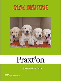 Papel Manualidades PRAXTON, Bloc x40 Hojas Surtidas