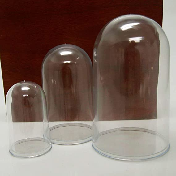 D Specimens H Medium 3 3//4 Acrylic Display Dome Case Cloche Globe For Collectables x 6 1//2