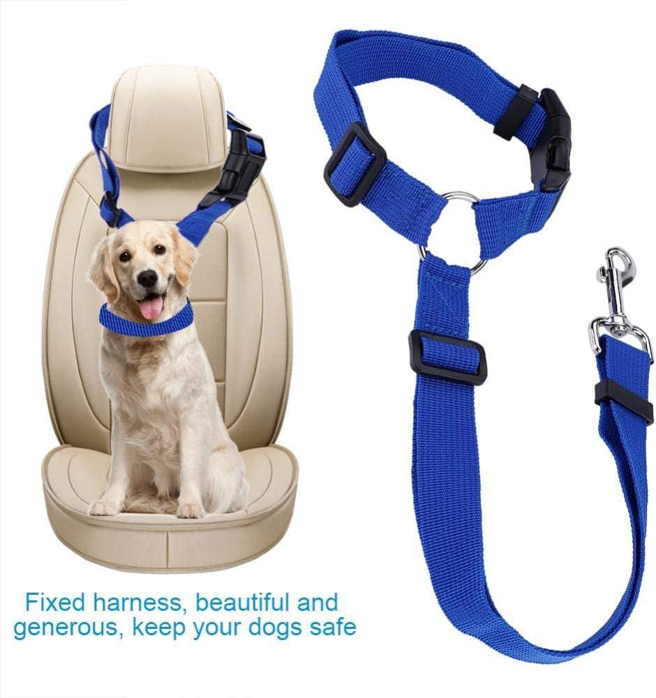 Gatos Azul arn/és de Cuerda Fija de Seguridad Mantiene a Sus Perros Seguros Cachorros con Anillo de Enchufe KUIDAMOS Cintur/ón de Coche Duradero para Perros Hecho de Material de Nailon