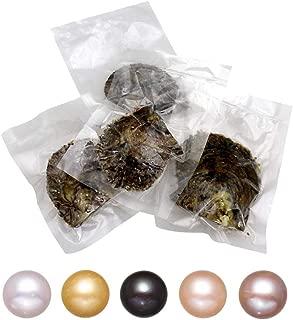 akoya cultured pearl oyster