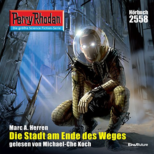 Die Stadt am Ende des Weges (Perry Rhodan 2558) Titelbild