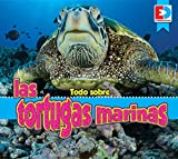 Todo Sobre Las Tortugas Marinas (EyeDiscover)
