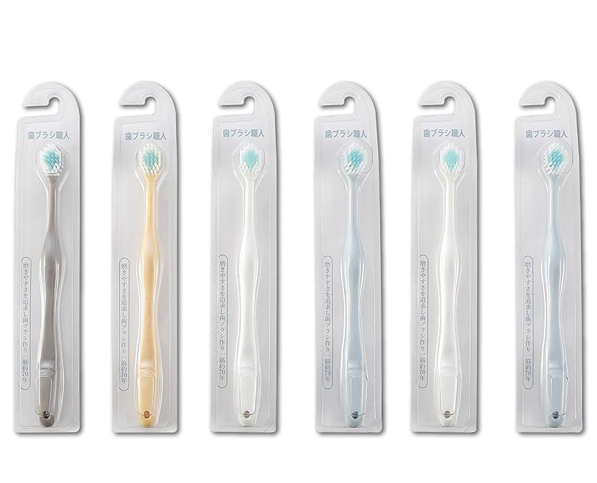 西欺卵歯ブラシ職人Artooth ? 田辺重吉 磨きやすい歯ブラシ ワイド 6列レギュラー AT-30 (6本組)