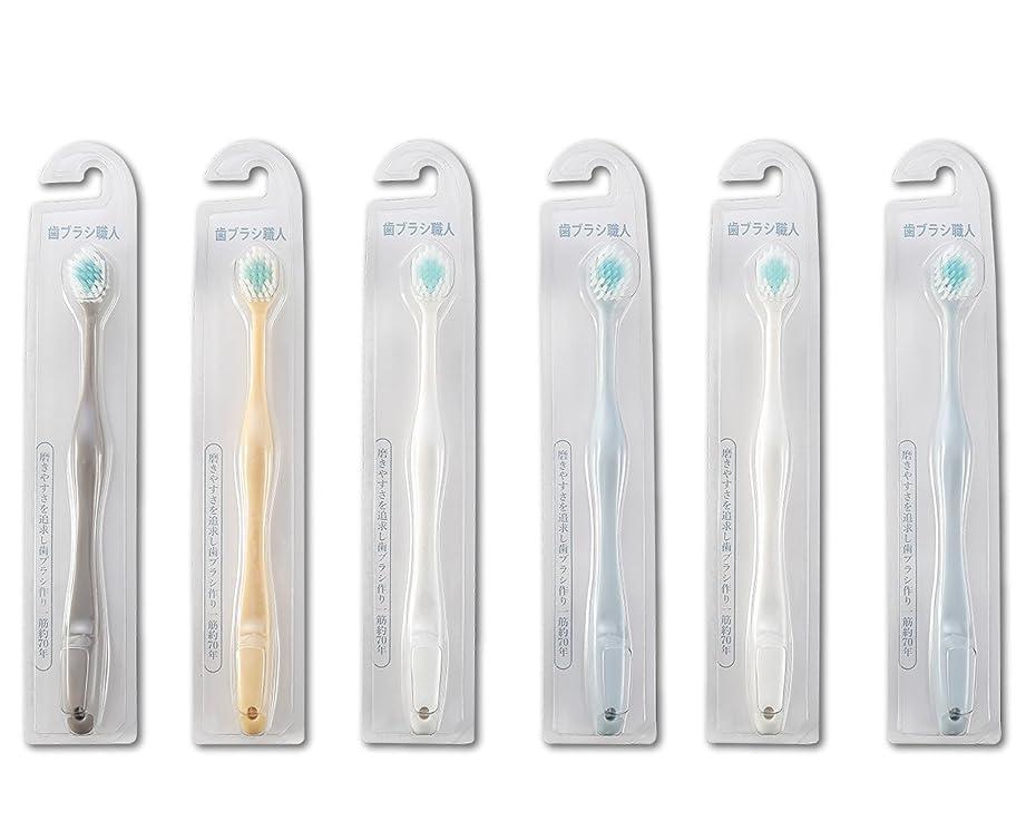 夢混乱させる期待歯ブラシ職人Artooth ? 田辺重吉 磨きやすい歯ブラシ ワイド 6列レギュラー AT-30 (6本組)