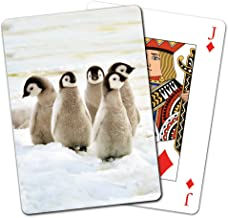 Tree-Free Greetings Deck of Playing Cards, 2.5 x 0.8 x 3.5 Inches, Emperor Penguin Chicks (CD15926)