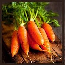 Little Finger Carrot Seeds   Heirloom & Non-GMO Carrot Seeds   Vegetable Seeds for Planting Outdoor Home Gardens   Plantin...