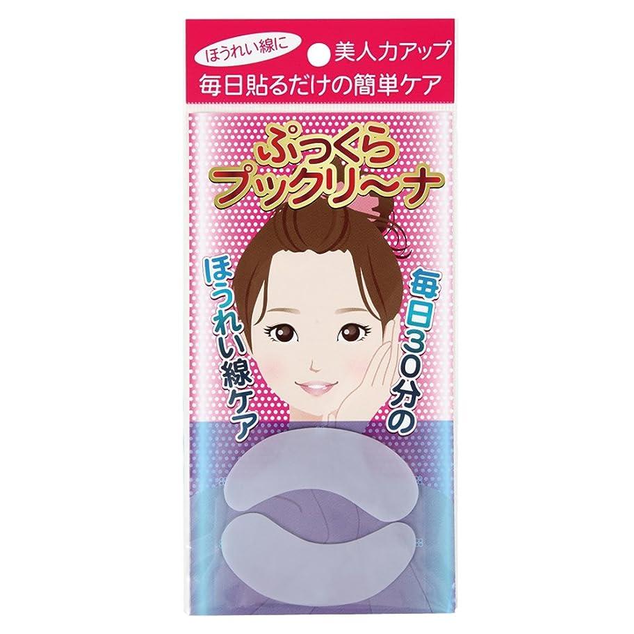 橋脚スーパーコレクション紀光 ぷっくら プックリ~ナ 2枚入り