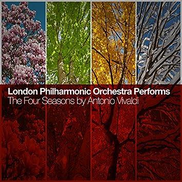 London Philharmonic Orchestra Performs the Four Seasons by Antonio Vivaldi