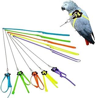 زمام لجام قابل للتعديل للطيور، احزمة وحبل جذب لتدريب الببغاوات في الهواء الطلق للببغاء الصغيرة (لون عشوائي)