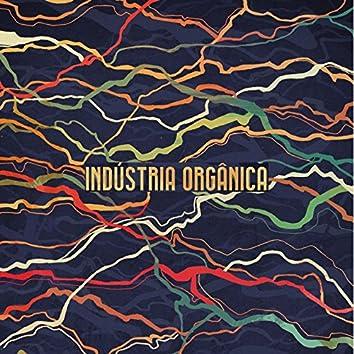 Indústria Orgânica