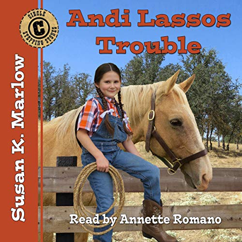 Andi Lassos Trouble audiobook cover art