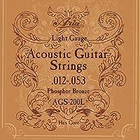 ARIA AGS-200L アコースティックギター弦×6セット