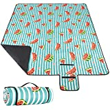 RUPUMPACK Extra Large 80''x80'' Picnic Blanket Waterproof Sandproof Beach Blanket Portable Outdoor Mat for Camping Hiking on Grass (Watermelon)