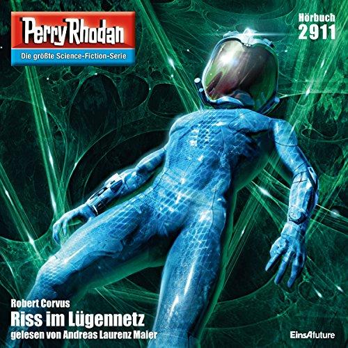 Riss im Lügennetz audiobook cover art