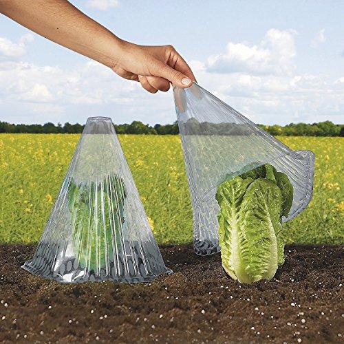 TRI Pflanzenhut, 10 Stück, transparente Abdeckung für Salatpflanzen zum Schutz vor Vögeln, Schnecken oder Witterung
