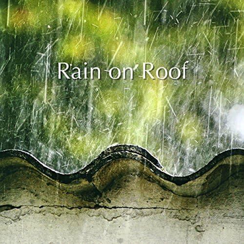 Rain for Deep Sleep, Deep Sleep & Nature Sounds