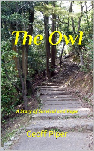 Book: The Owl by Geoff Piper