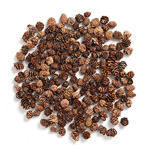 BYHER Pine Cones, Mini Pinecones in Bulk for Crafts, 8OZ, Pack of 110 (Natural)
